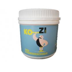 KO_ZI - Der Hygieniksorber